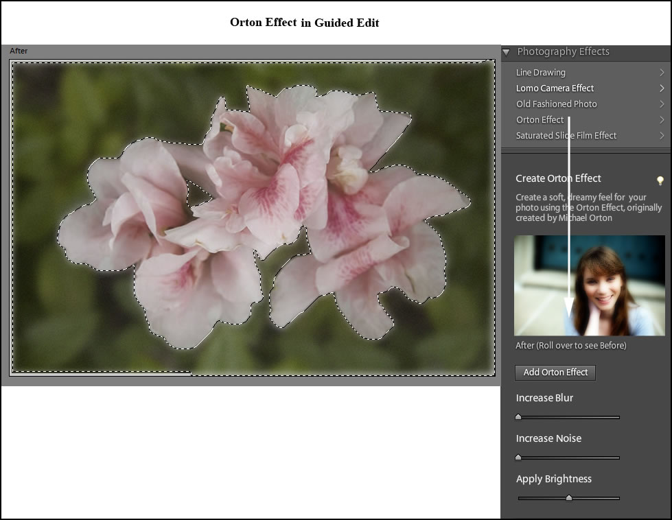 How To Edit Multiple Pictures In Photoshop Elements