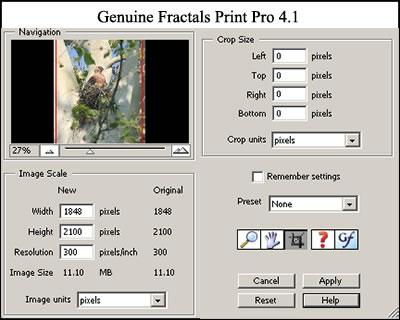 Genuine Fractals Printpro 5.04 Скачать Бесплатно Rus