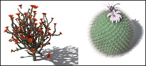 Xfrog - 3D Trees and Plants for CG Artists